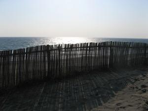 浜岡砂丘.JPG